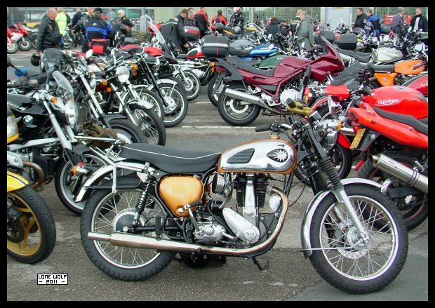 Of course, the best bike at the show was that excellent swing arm, alternator, BSA B33.